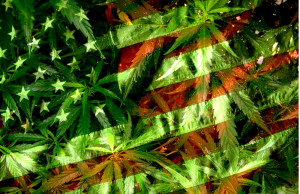 american-flag-and-weed
