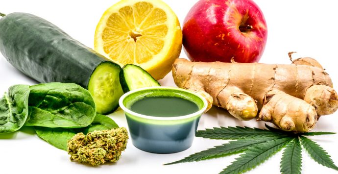 stonermag_feb2017_health_header_925X500_JUICING_CANNABIS-690x355